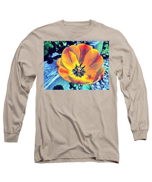 Long Sleeve T-Shirt featuring the photograph Spring Flower Bloom by Derek Gedney
