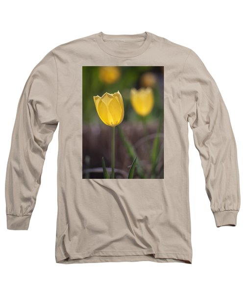 Spring Happiness Long Sleeve T-Shirt by Morris  McClung