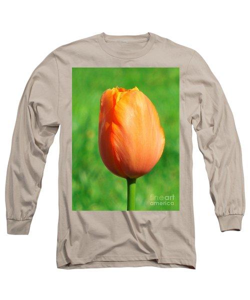 Spring Tulip Long Sleeve T-Shirt