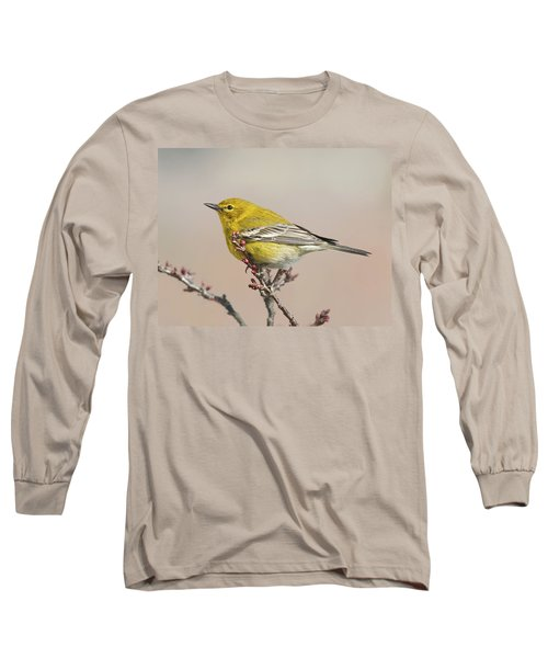 Long Sleeve T-Shirt featuring the photograph Spring Warbler 1 2017 by Lara Ellis