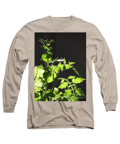 Spring103 Long Sleeve T-Shirt by En-Chuen Soo