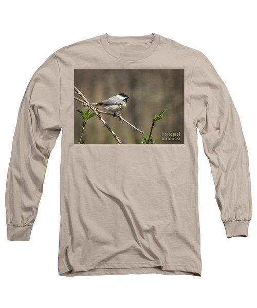 Springtime Chickadee Long Sleeve T-Shirt