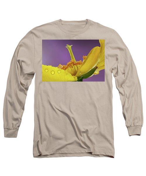 St Johns Wort Flower Long Sleeve T-Shirt