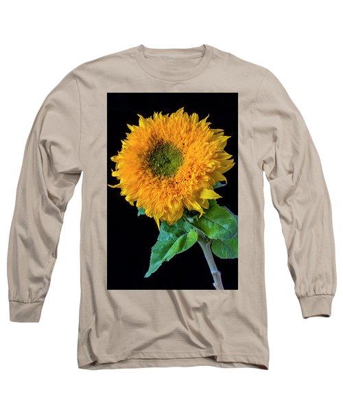 Stately Sunflower Long Sleeve T-Shirt