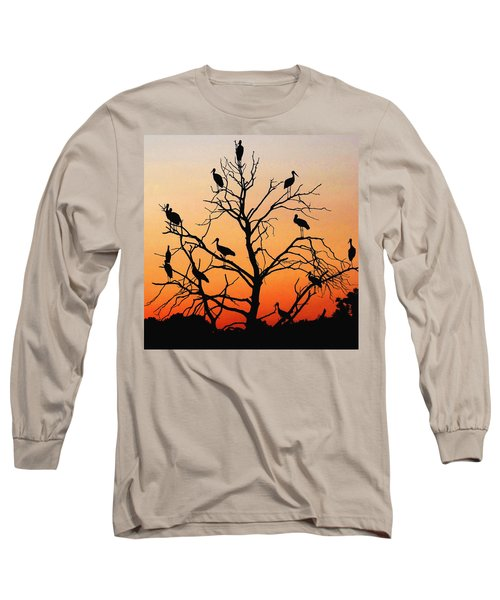 Storks In The Evening Sun Light Long Sleeve T-Shirt