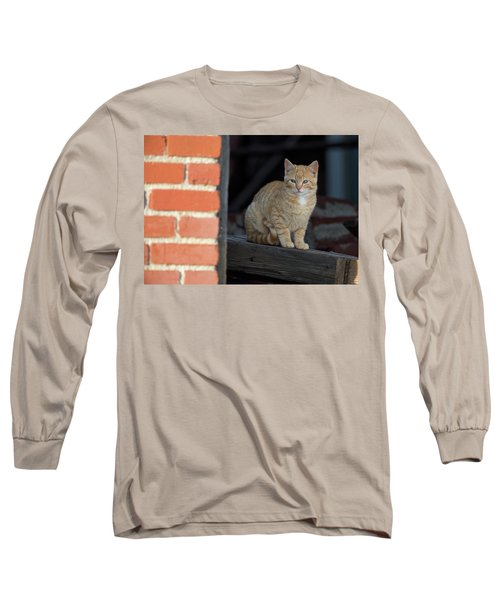 Street Cat Long Sleeve T-Shirt
