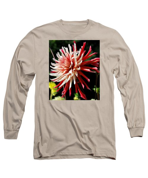 Striking Dahlia Red And White Long Sleeve T-Shirt
