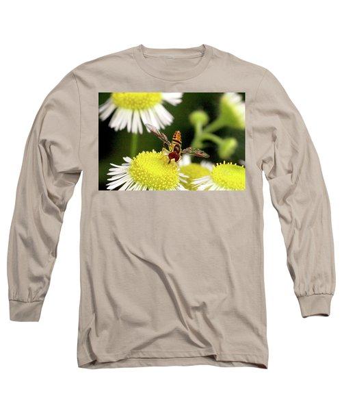 Sugar Bee Wings Long Sleeve T-Shirt by Meta Gatschenberger