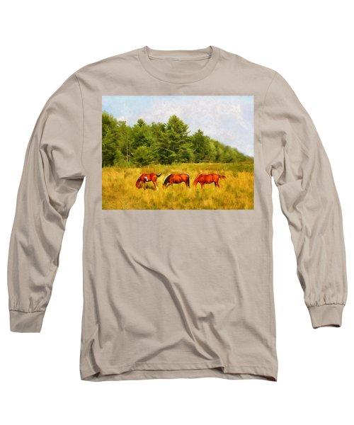 Summer Hay Burners Long Sleeve T-Shirt