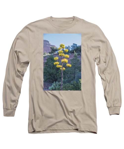 Long Sleeve T-Shirt featuring the photograph Sun Brightened Century Plant by Laura Pratt