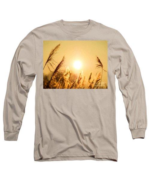 Sun Long Sleeve T-Shirt by Daniel Heine