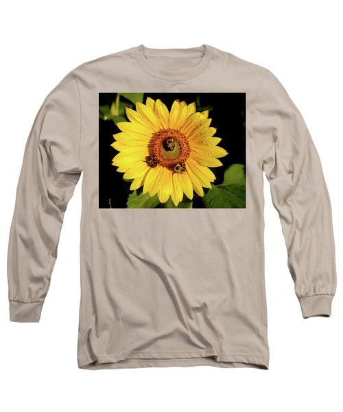 Sunflower And Bees Long Sleeve T-Shirt by Nancy Landry