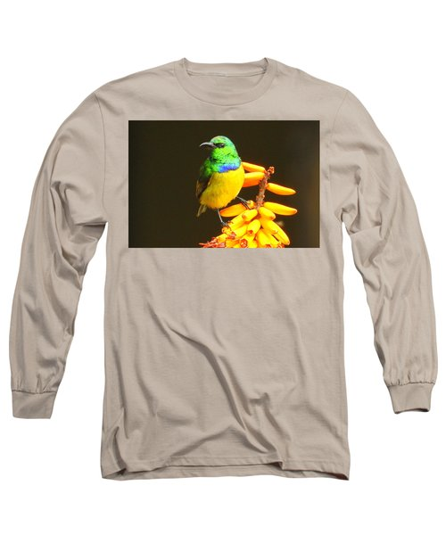 Sunbird Long Sleeve T-Shirt by Betty-Anne McDonald