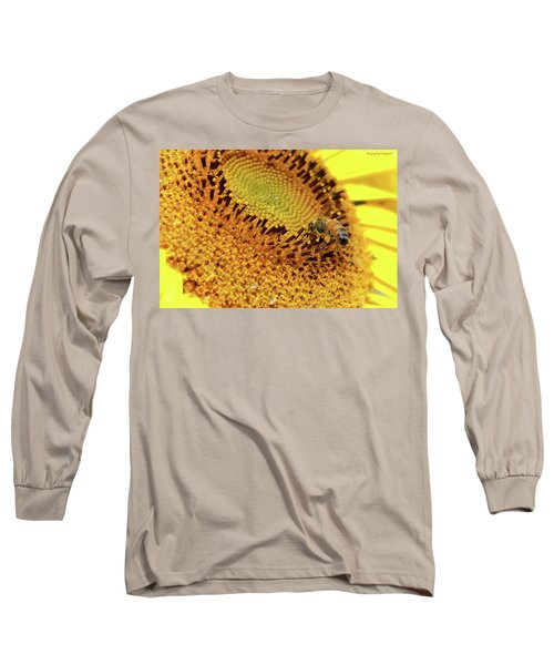 Sunflower 001 Long Sleeve T-Shirt by Kevin Chippindall