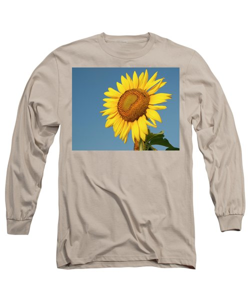 Sunflower And Blue Sky Long Sleeve T-Shirt by Phyllis Peterson
