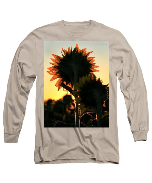 Long Sleeve T-Shirt featuring the photograph Sunflower Greeting  by Chris Berry