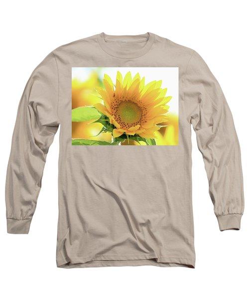 Sunflower In Golden Glow Long Sleeve T-Shirt