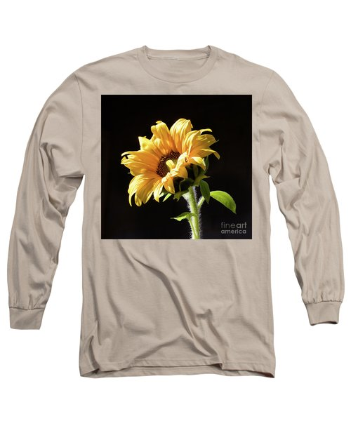 Sunflower Isloated On Black Long Sleeve T-Shirt