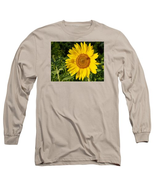 Sunflower With Bee Long Sleeve T-Shirt