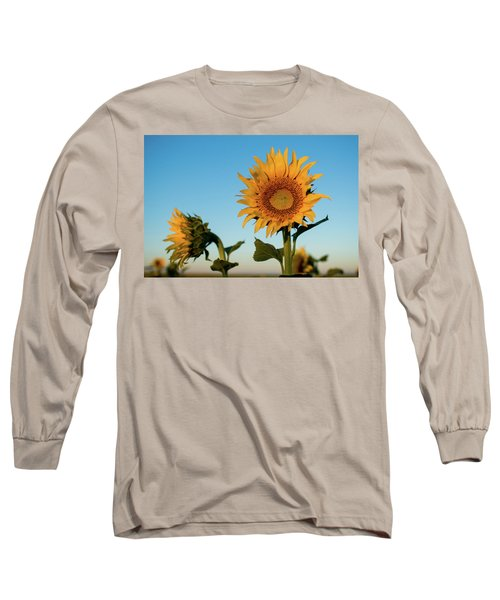 Sunflowers At Sunrise 1 Long Sleeve T-Shirt
