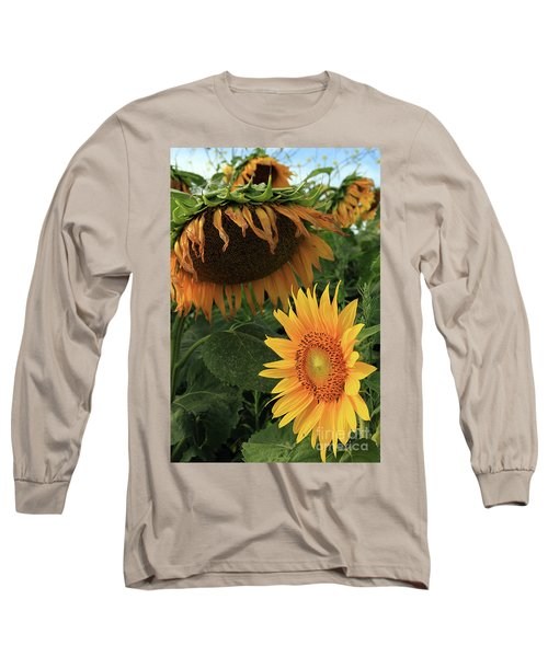 Sunflowers Past And Present Long Sleeve T-Shirt