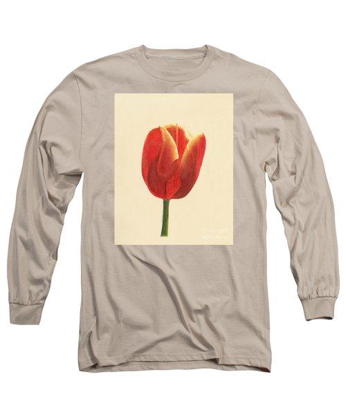 Sunlit Tulip Long Sleeve T-Shirt by Phyllis Howard