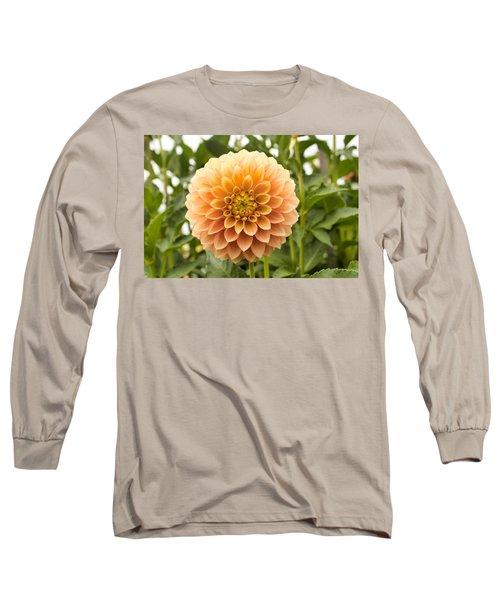 Sunny Dahlia Long Sleeve T-Shirt
