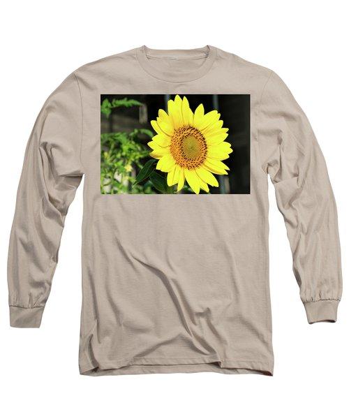Sun's Up Long Sleeve T-Shirt by Ed Waldrop