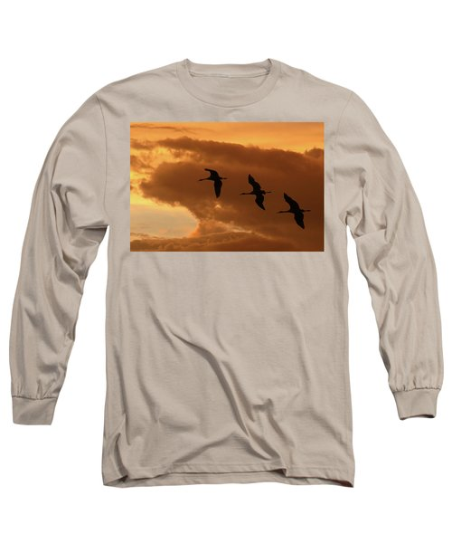 Sunset Flight Long Sleeve T-Shirt