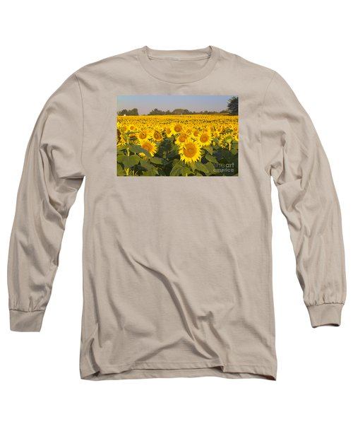 Sunshine Flower Field Long Sleeve T-Shirt