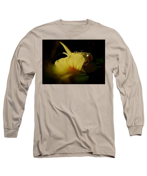 Sunshine In The Bubble Long Sleeve T-Shirt by Richard Cummings