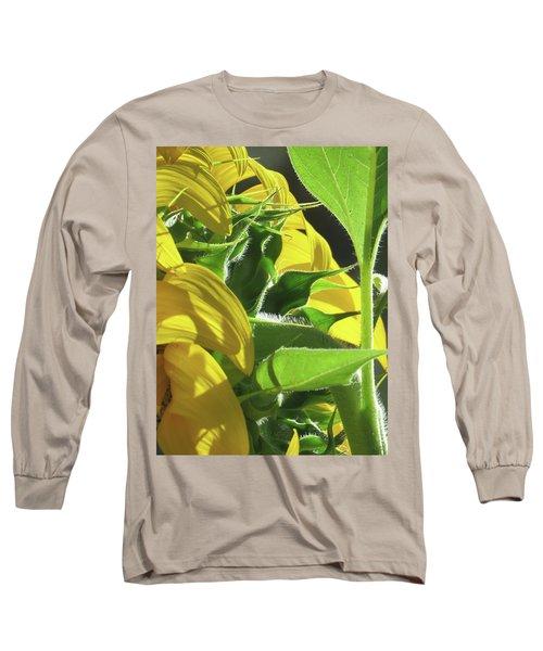 Sunshine In The Garden 18 Long Sleeve T-Shirt by Brooks Garten Hauschild