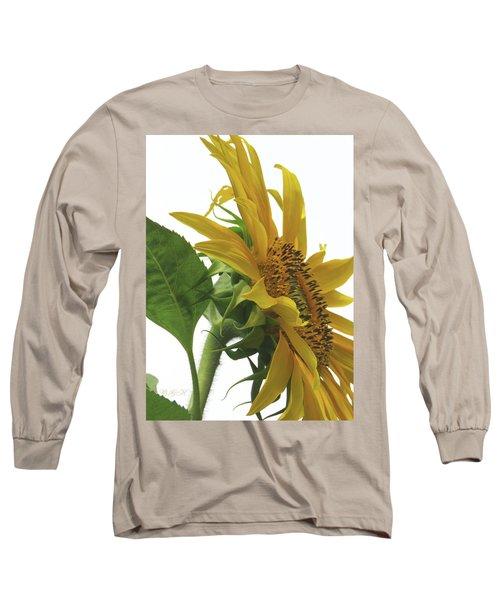 Sunshine In The Garden 25 Long Sleeve T-Shirt by Brooks Garten Hauschild