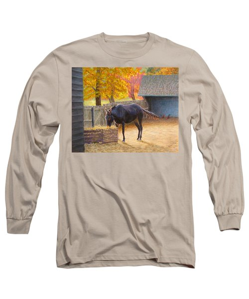 Supper Time Long Sleeve T-Shirt by Joe Bergholm