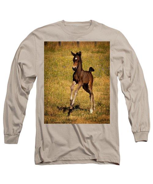 Surprise Party Long Sleeve T-Shirt