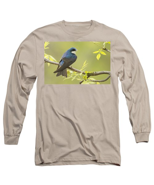 Swallow Long Sleeve T-Shirt by Mircea Costina Photography