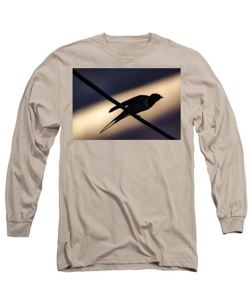Swallow Speed Long Sleeve T-Shirt by Rainer Kersten