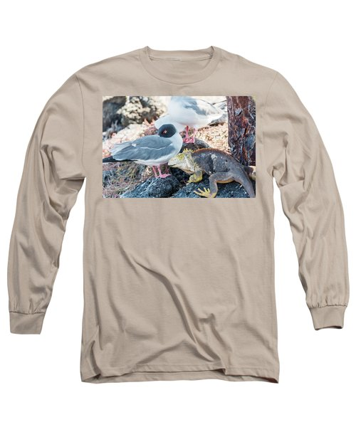 Swallow Tailed Gull And Iguana On  Galapagos Islands Long Sleeve T-Shirt