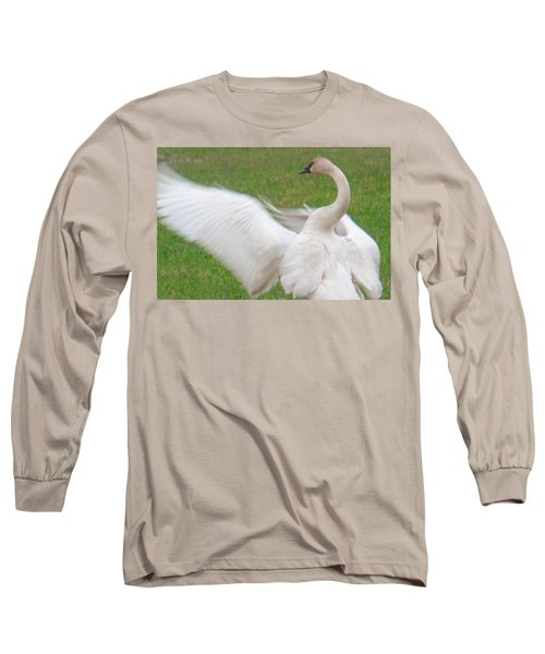 Swan Posing Long Sleeve T-Shirt by Karen Molenaar Terrell