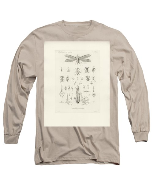 Termites, Macrotermes Bellicosus Long Sleeve T-Shirt by H Hagen