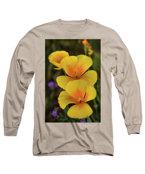 Long Sleeve T-Shirt featuring the photograph That Golden Spring Glow  by Saija Lehtonen
