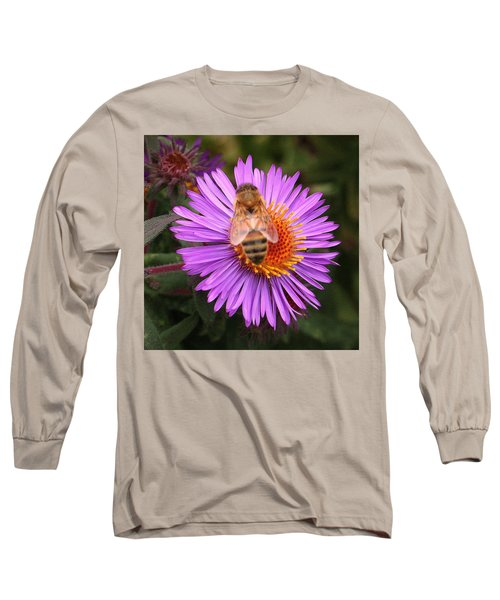 The Aster And The Bee Long Sleeve T-Shirt