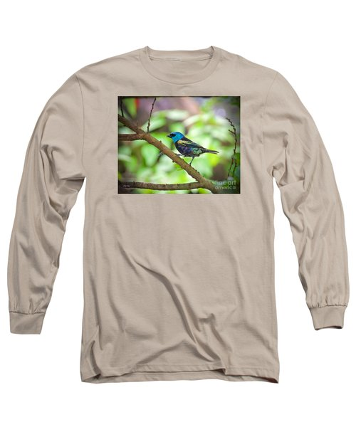 Long Sleeve T-Shirt featuring the painting The Blue Necked Tanager by Judy Kay