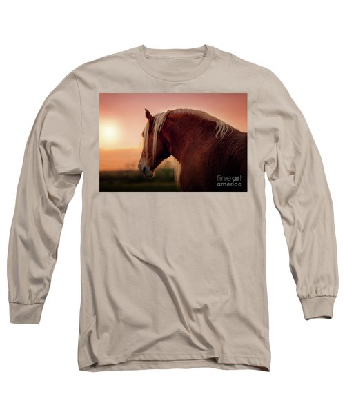 The End Of A Long Day At The Ranch Long Sleeve T-Shirt by Tamyra Ayles
