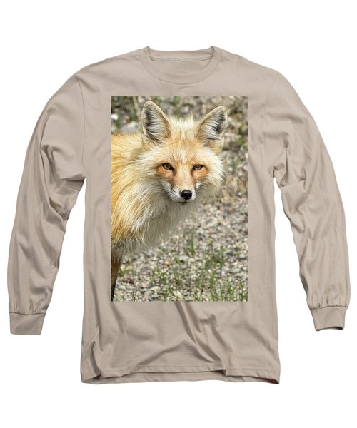 The Gaze Long Sleeve T-Shirt