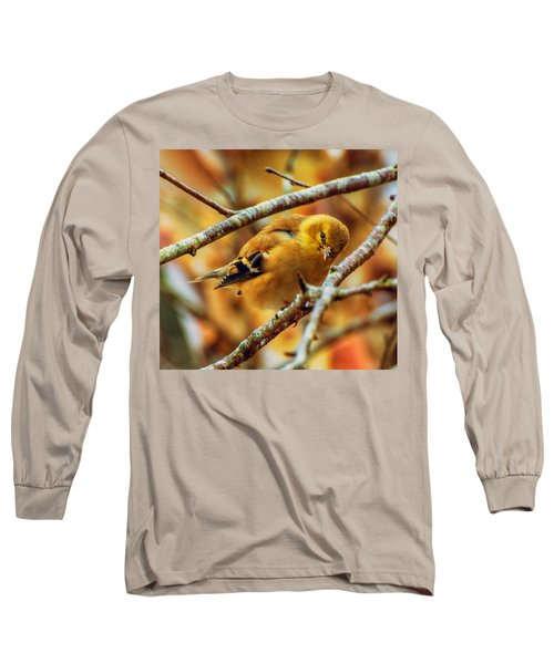 The Inquisitive Goldfinch Long Sleeve T-Shirt