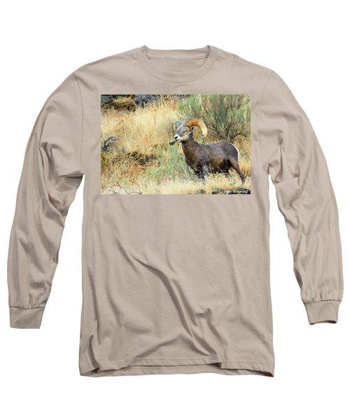 The Loner II Long Sleeve T-Shirt by Steve Warnstaff