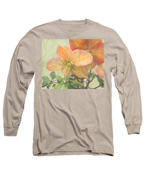 The Mystical Energy Of Nature Long Sleeve T-Shirt by I'ina Van Lawick
