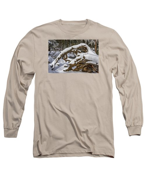 The Roots Of Winter Long Sleeve T-Shirt by Mitch Shindelbower