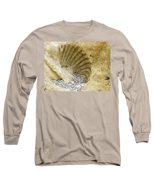 The Shell Fossil Long Sleeve T-Shirt